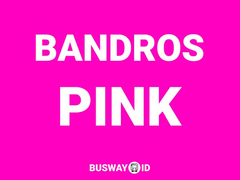 Bus Bandros Pink